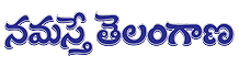 Namasthe Telangana Warangal Classifieds